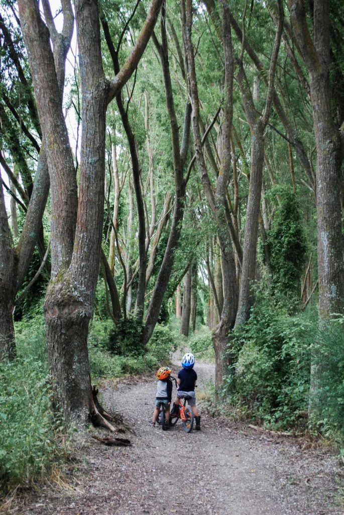 Quiet and off the beaten track, this river trail track at the Ashburton River Trail, is a great easy walk or bike for toddlers and older children // Backyard Travel Family