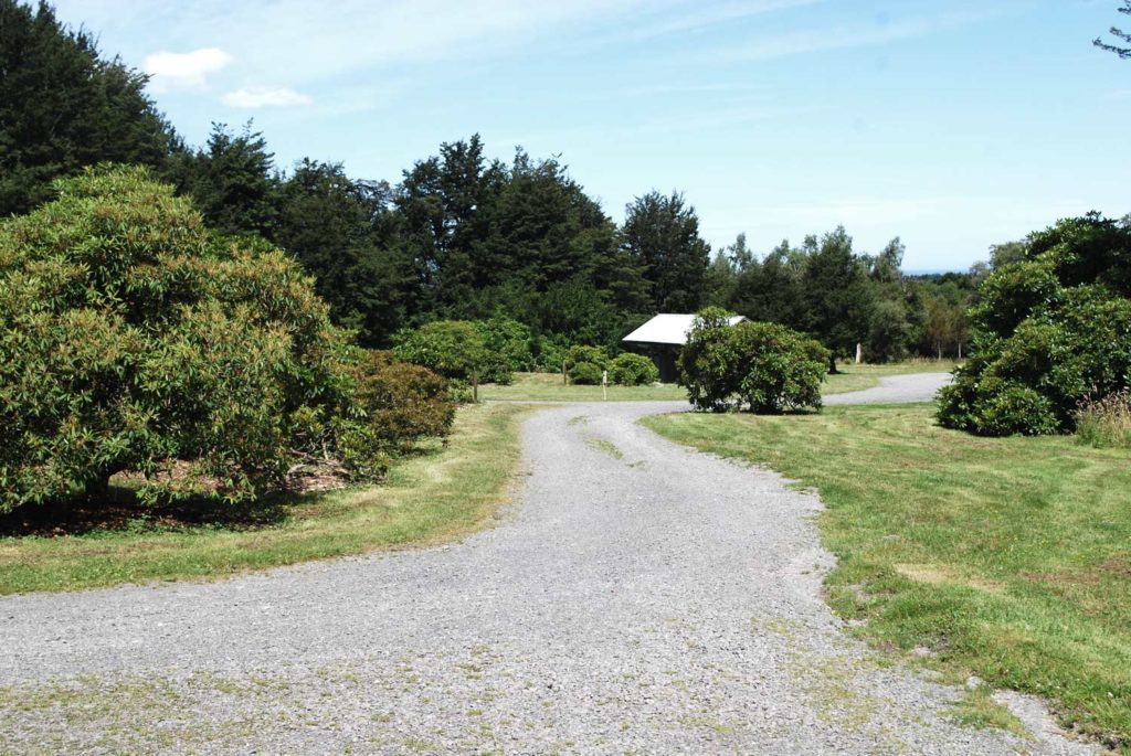 Parking and facilities in the clearing at the Awa Awa Rata Reserve // Backyard Travel Family