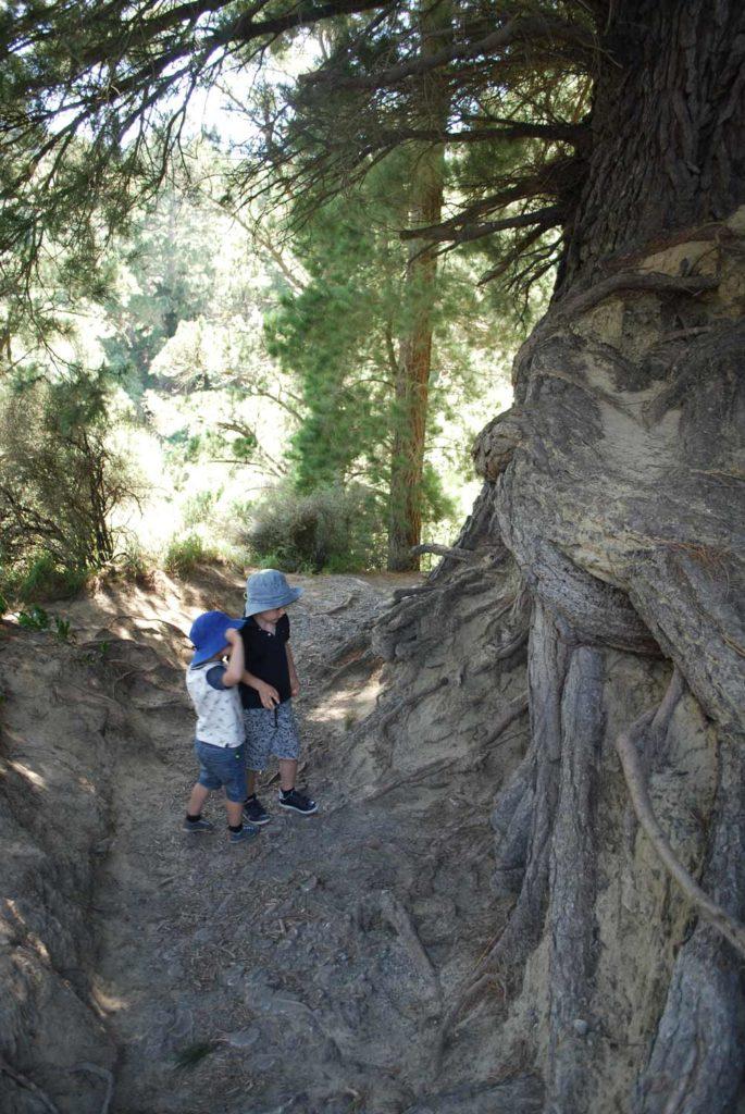 Rakaia Gorge Walkway: A great short walk for the whole family // Backyard Travel Family