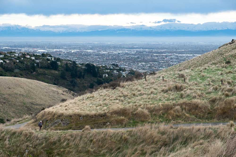 Christchurch City View from the Rapaki Track, Port Hills, Canterbury, New Zealand, with the snowy southern alps in the backyground