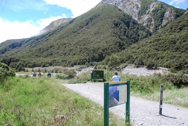Walkers begin their short 30 minute walk to the Devils Punchbowl Waterfalls in Arthurs Pass National Park New Zealand I Photo by Backyard Travel Family
