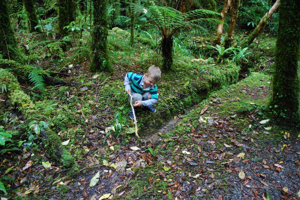 Lots of fun with sticks and searching for gold on the Woods Creek Walk, Greymouth, NZ