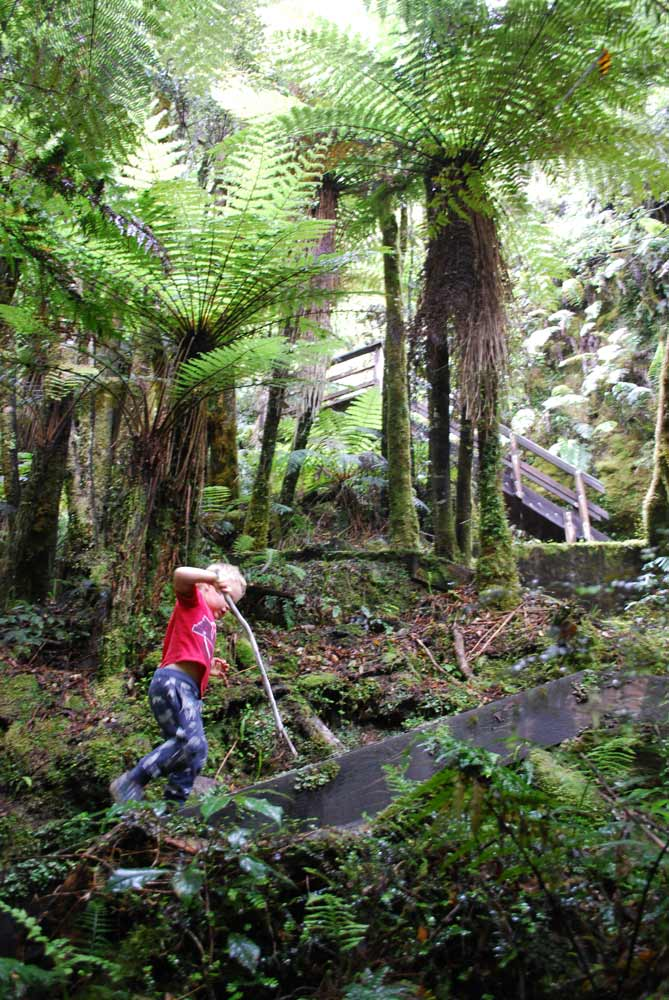 Kipton from Backyard Travel Family explores the stairs on the Woods Creek short walk, Greymouth, NZ