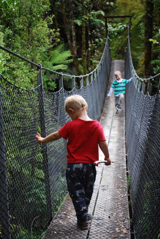 Bouncy swing bridge on the Woods Creek Walk I Search for gold mines and tunnels I Greymouth NZ