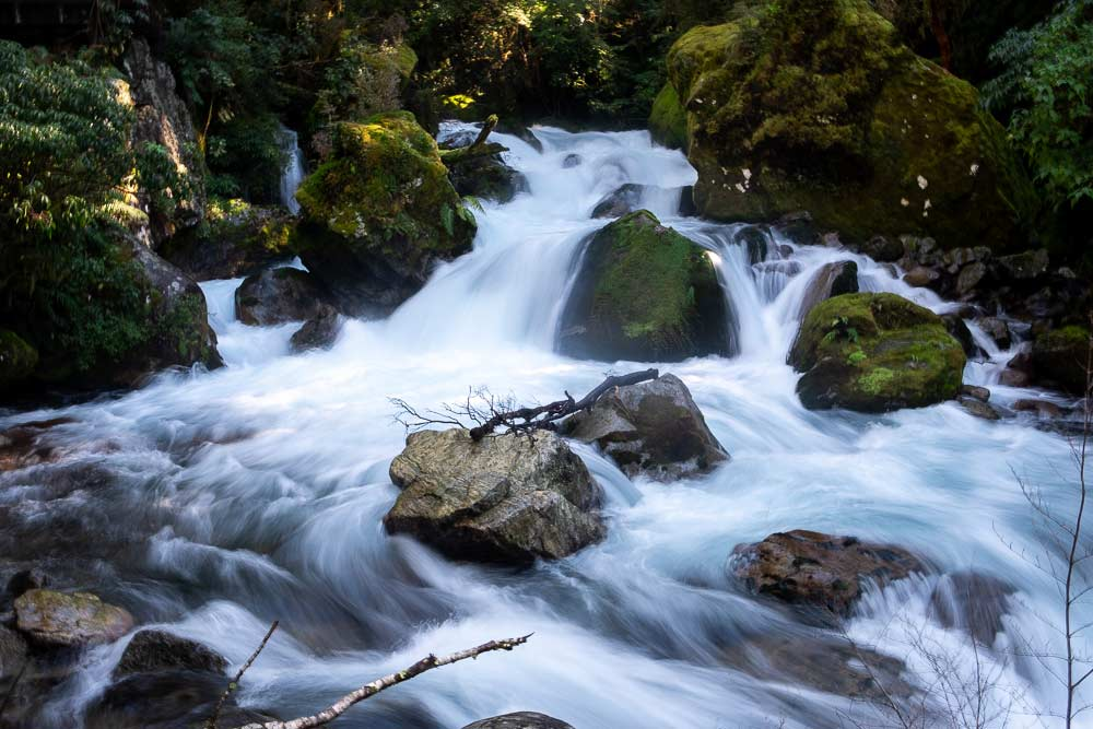 Lake Marian Falls, an easy short walk on the Milford Road Highway, Fiordland. Perfect short walk with kids by Backyard Travel Family