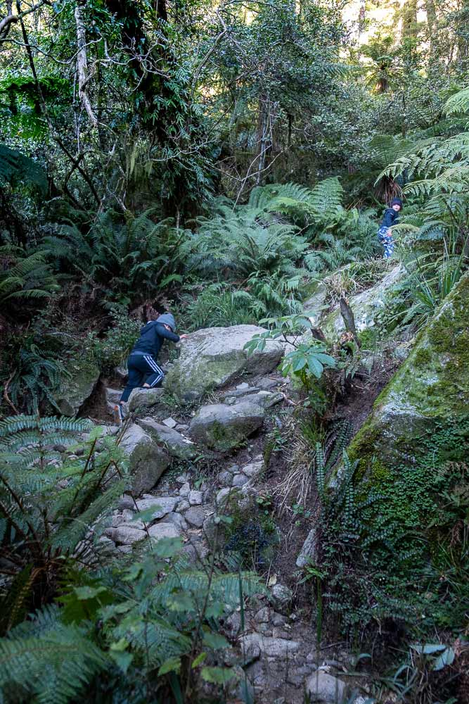 Climbing the rocks on the Lake Marian track, a great half way walk on the Milford Road Highway, Fiordland. You can even walk to Lake Marian with kids by Backyard Travel Family