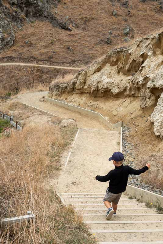 Nathan from Backyard Travel Family runs down the stairs on the Godley Heads Track, Canterbury, New Zealand