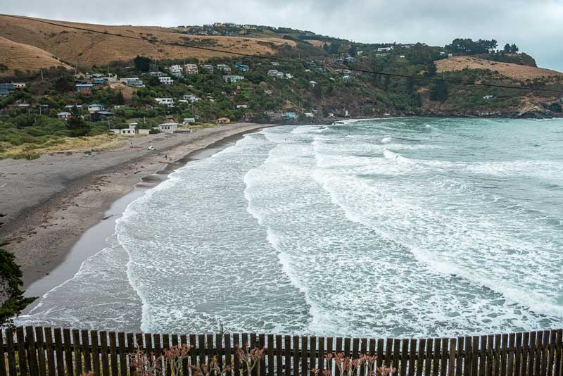 View over Taylors Mistake Beach from Godley Head Track, Christchurch, Canterbury, New Zealand. Photo by Backyard Travel Family
