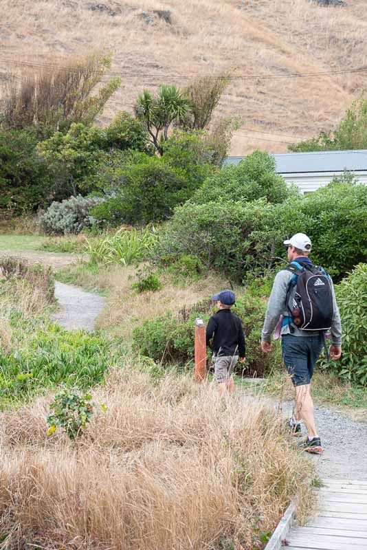 Start of the Godley Heads Track, Great family walk with kids, Christchurch, New Zealand