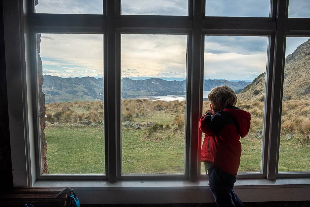 Kipton from Backyard Travel Family looks out the window at Packhorse Hut overlooking Banks Peninsula and Lyttelton Harbour