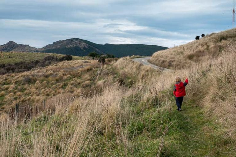 Kipton from Backyard Travel Family starts one of the best family overnight hikes / Packhorse Hut Track, Christchurch, New Zealand