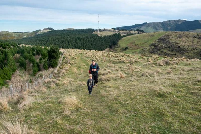 Kipton and Ashley from Backyard Travel Family emerge from the forest into open field on the Packhorse Hut Track / Best Overnight Hike for kids in Christchurch, NZ