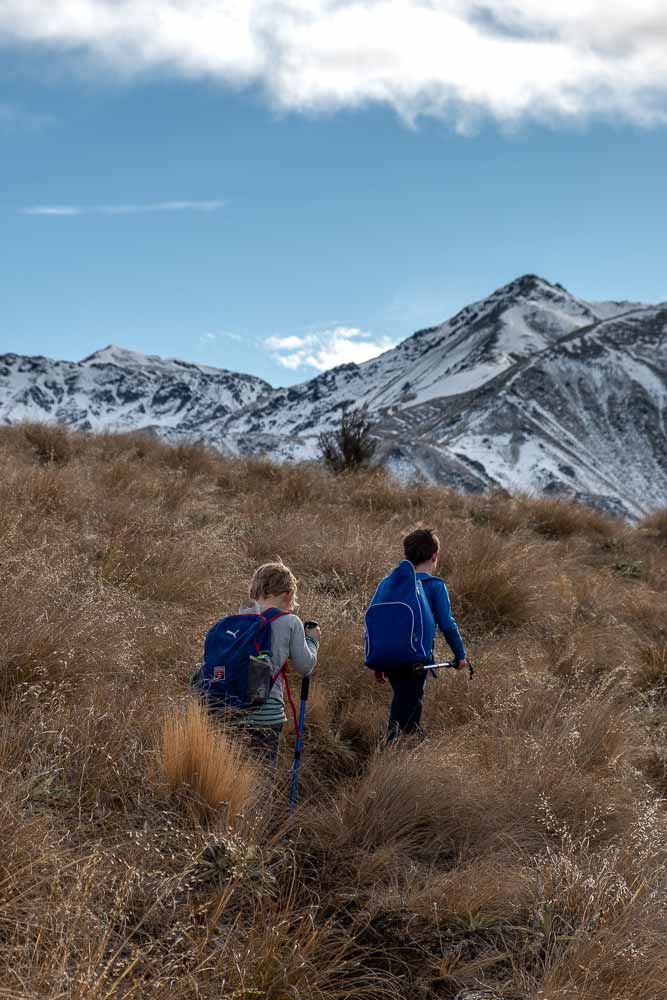 Nathan from Backyard Travel Family climbs through the tussock, snowy mountains in the background, on the Woolshed Creek Hut Track, on the Mt Somers Track, Mid Canterbury, New Zealand
