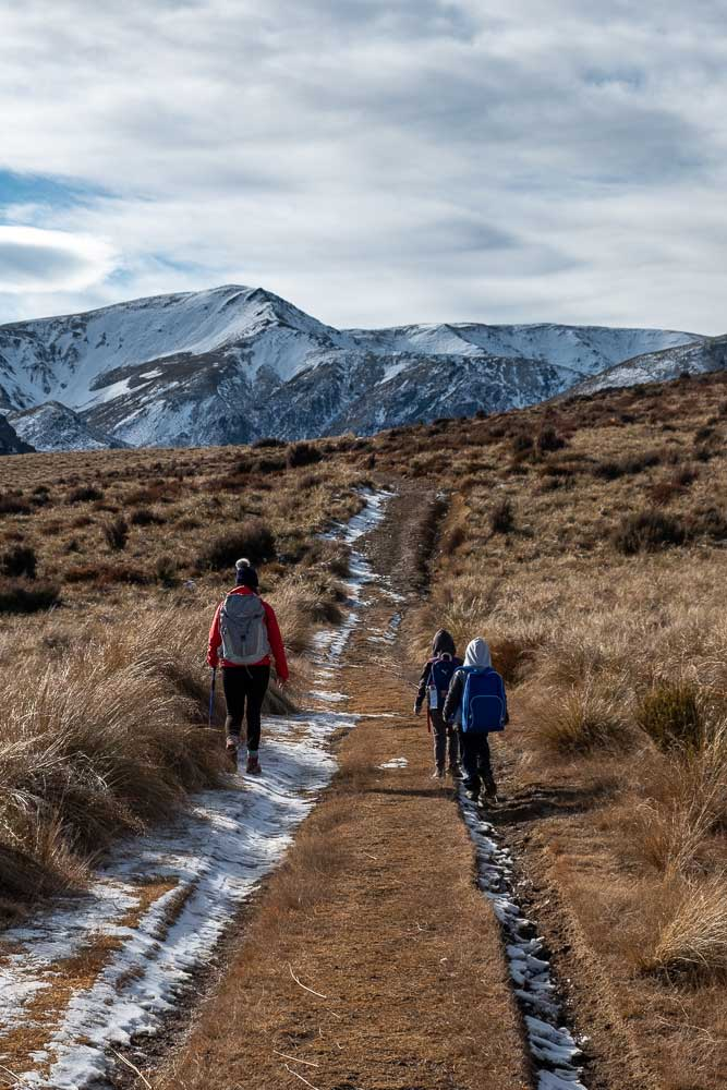 Walking towards the snowy mountains on the Woolshed Creek Hut walk, Mt Somers Track, Mid Canterbury, NZ