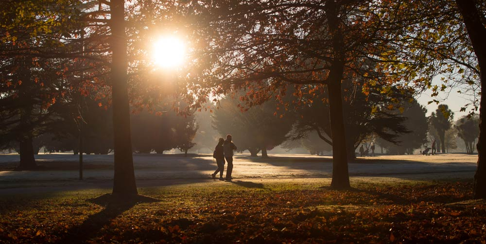 Sunsetting in Hagley Park, photo by ChristchurchNZ
