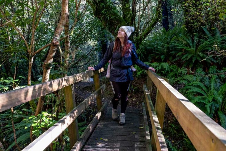 Crossing the bridge on the Scotts Saddle Track in the Awa Awa Rata Reserve near Methven in Canterbury, New Zealand