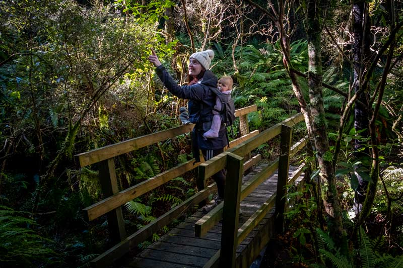 Jen from Backyard Travel Family pointing out at fantail in the Awa Awa Rata Reserve near Methven.