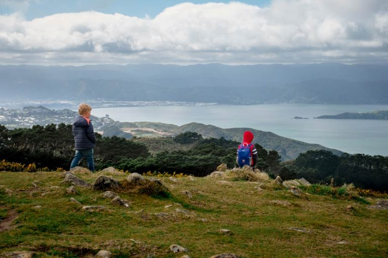 Views over the Hutt Valley from Mt Kaukau track