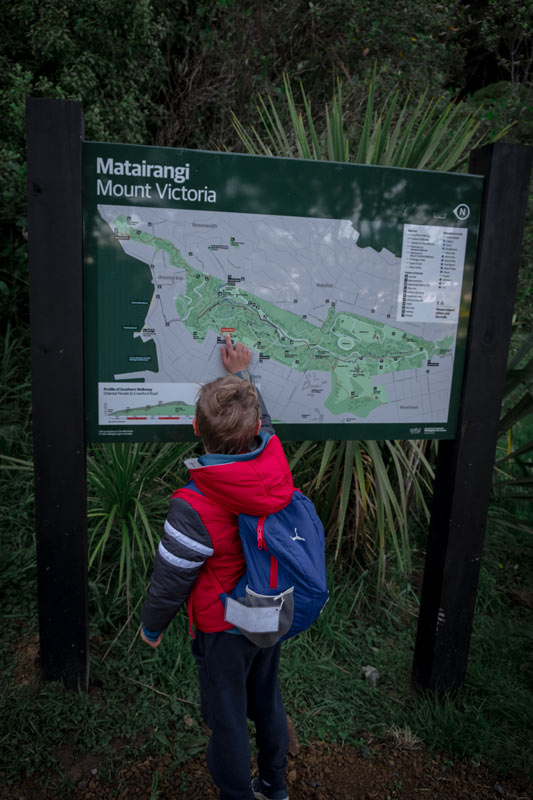 Nathan from Backyard Travel Family finds where we are on the Mt Victoria Track Map, Wellington