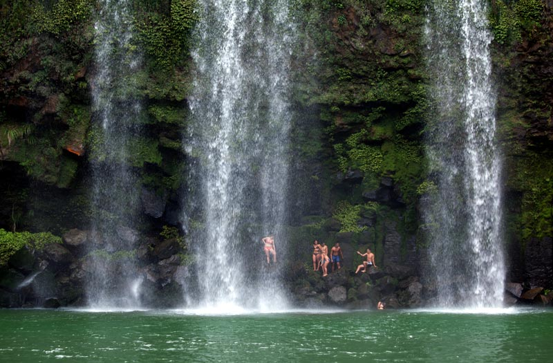 Locals swim at the base of Whangarei Falls, Northland, New Zealand