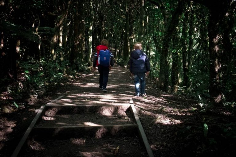 Kipton and Nathan from Backyard Travel Family walk through the darkened forest of the Mt Kaukau Track, near Wellington, New Zealand