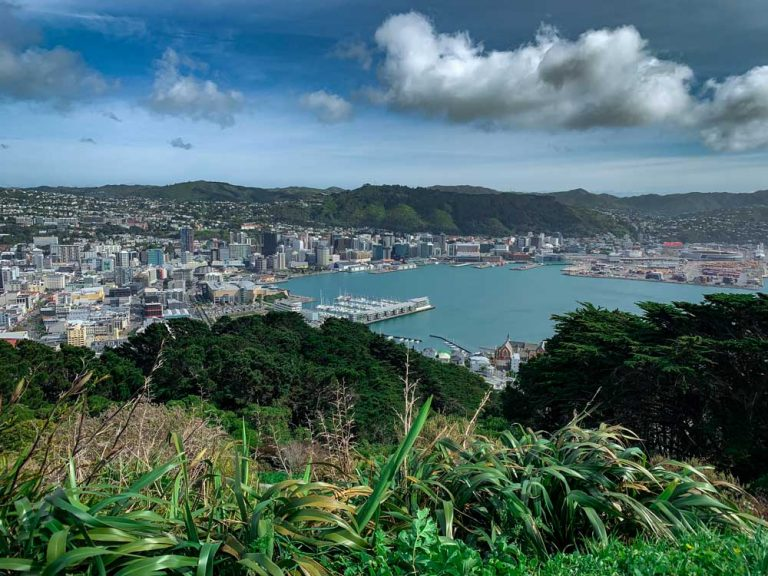 View over Wellington City and Wellington Harbour from Mt Victoria Summit Lookout Walk - photo by Backyard Travel Family