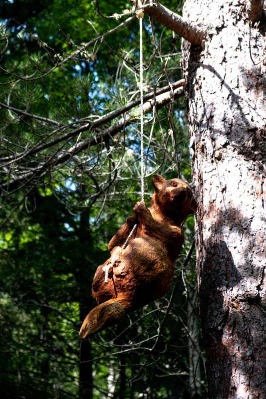 Wooden sculpted possum swings in the tree on the Art in the Forest Walk, Hanmer Springs