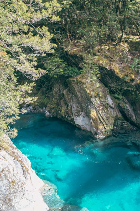 Blue Pools Wanaka, the beautiful but freezing azure blue waters and as clear as ice