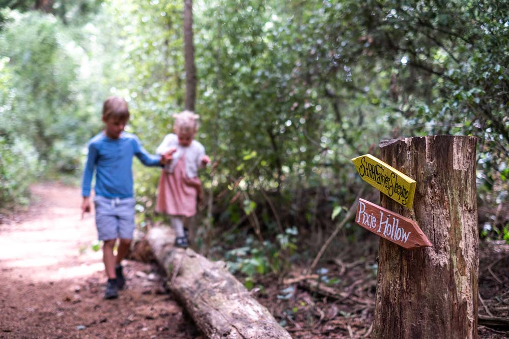 Signs for Pixie Hollow and fairies sleeping as children from Backyard Travel Family walk hold hands, walking on a log in McHughs Forest in the background