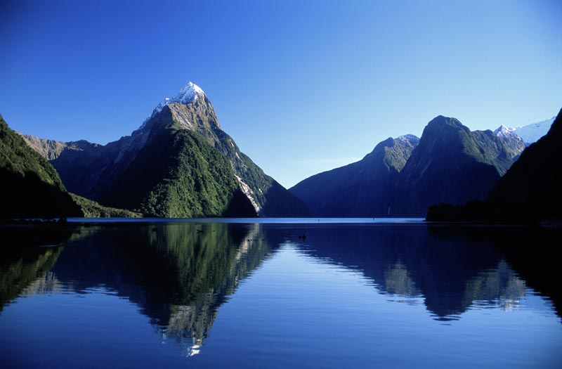 Mitre Peak stands proudly in Milford Sound on a beautiful clear blue day. Mitre Peak reflects into the waters