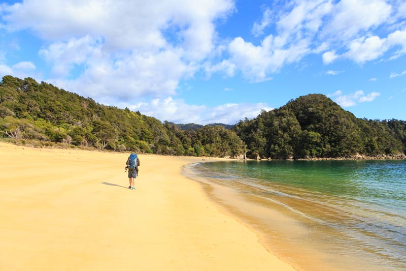Lone hiker carries a pack as he walked on the beach on the Abel Tasman Great Walk