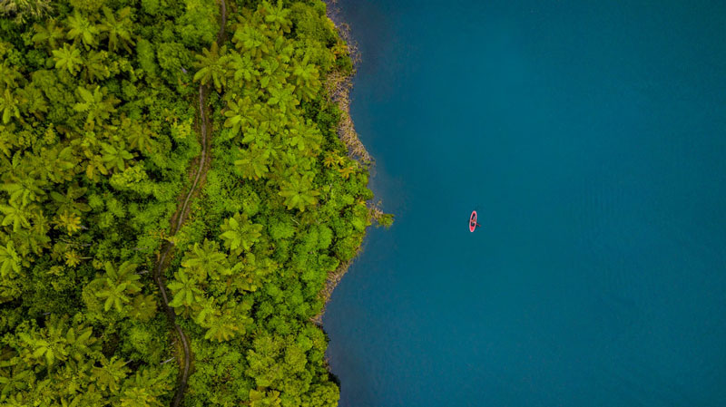 Aerial view of Paddleboarder, paddling in blue waters beside lush bush track in Rotorua
