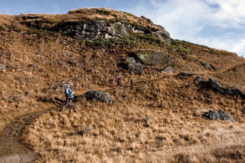 Track sidles up the the mountainside, near the top of the Diamond Lake and Rocky Mountain Wanaka walk
