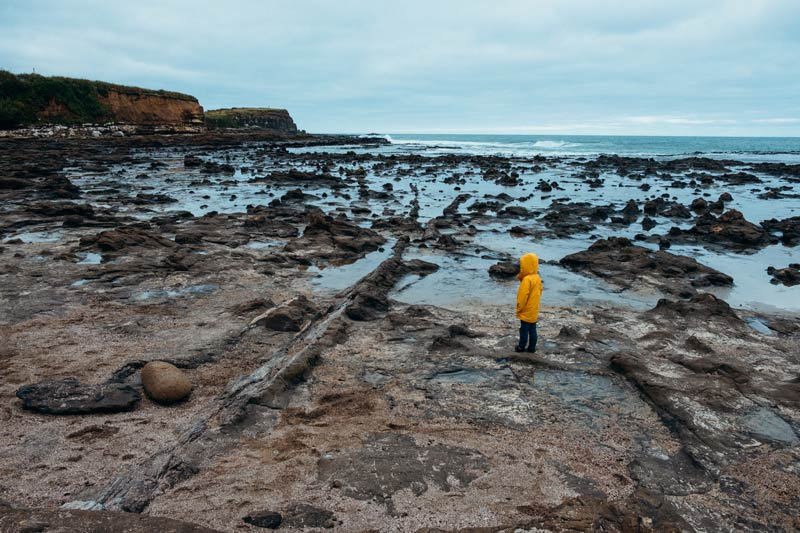 Exploring the Petrified Forest at Curio Bay is one of the most interesting things to do in the Catlins, NZ