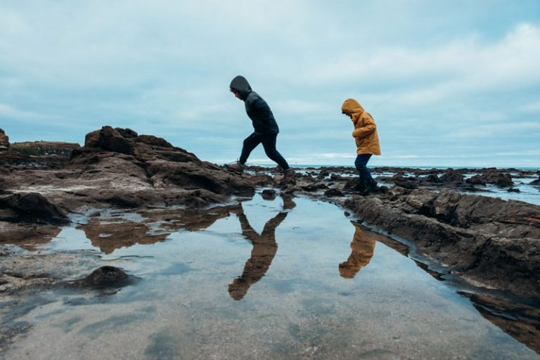 Nathan and Kipton from Backyard Travel Family explore the ancient trees in the Petrified Forest Curio Bay Catlins NZ