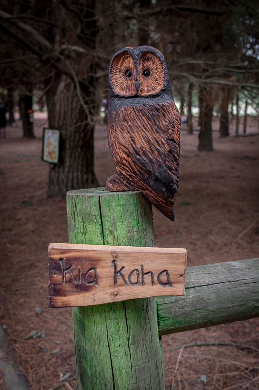 Wooden carved owl at the beginning of the Bottle Lake Forest Fairy Village Walk in Christchurch