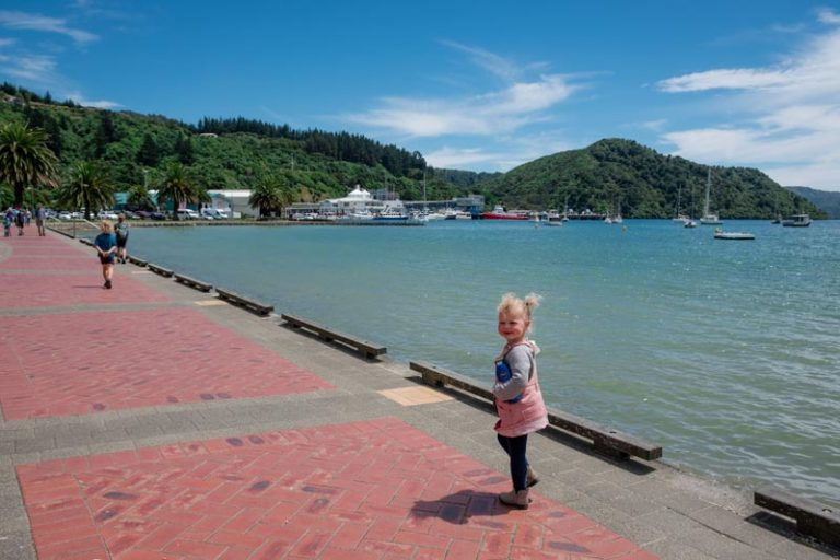 Emilia from Backyard Travel Family walks along the Picton Waterfront on a sunny blue day