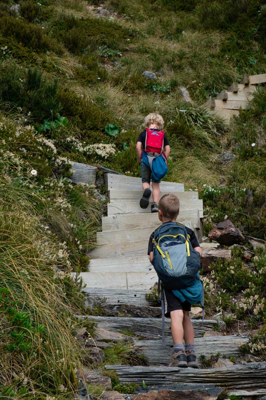 Kipton and Nathan walk up 2200 stairs on Mt Cooks Sealy Tarns Track, New Zealand