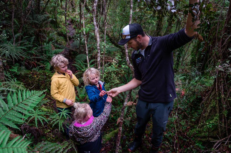 Dale from Franz Josef Wilderness Tours offer three children a taste of horopito on his boat cruise and forest walk tour